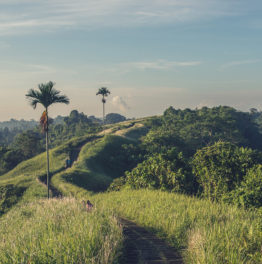 'I Travelled to Bali to Learn Code in 10 Days'