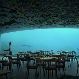 Dinner Under the Sea at Norway's Underwater Restaurant